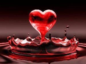 Кровь и любовь
