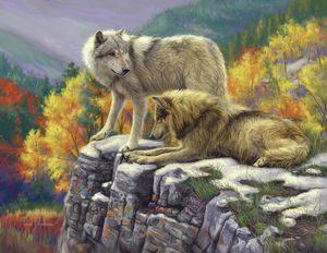 Белый и серый волки