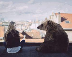 Современные сны о медведе