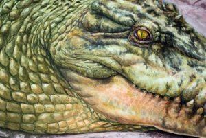 Морда крокодила