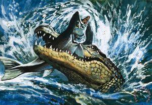 Крокодил охотится