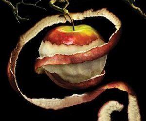 Испорченое яблоко